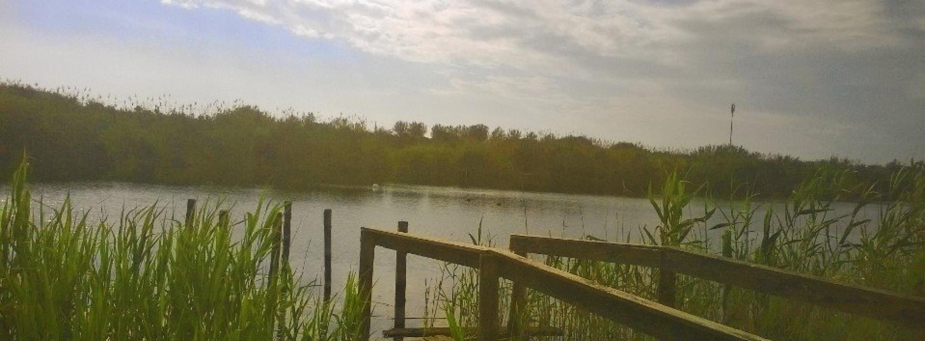 Parco degli Uccelli, riserva naturale sul Litorale Domitio