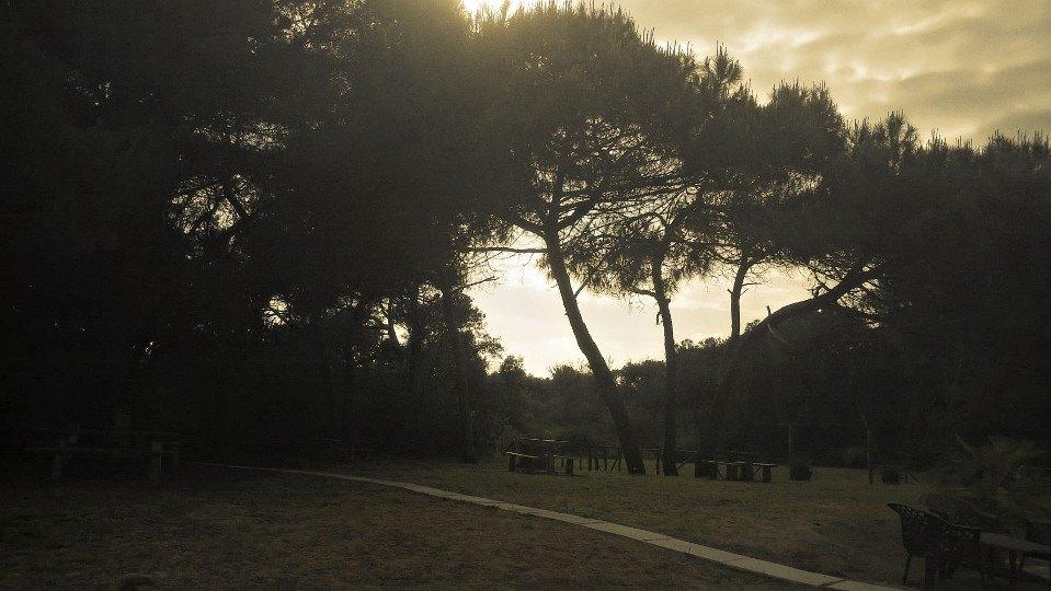 Parco degli Uccelli Ph: Simona Vitagliano