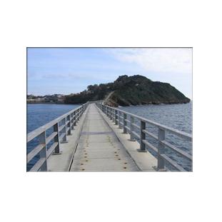 Pote di collegamento tra Vivara e Procida Fonte: http://corrieredelmezzogiorno.corriere.it/