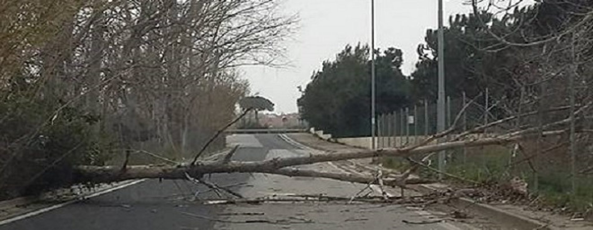 Disagi a Nord di Napoli a causa del Ciclone Zissi