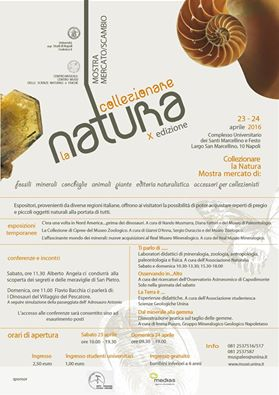 Collezionare la Natura, la locandina