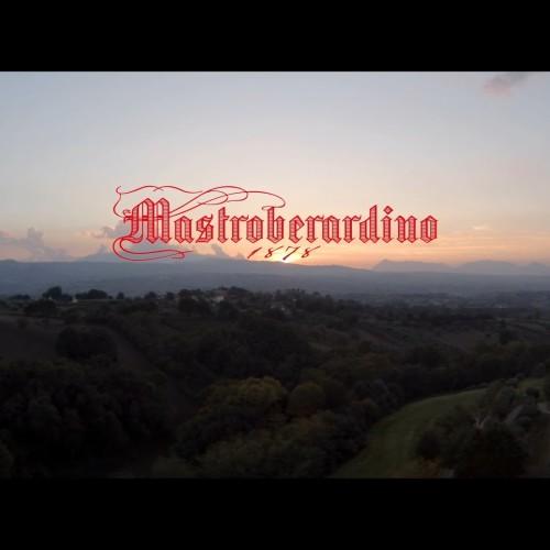Cantine Mastroberardino: storia di un successo tutto campano!