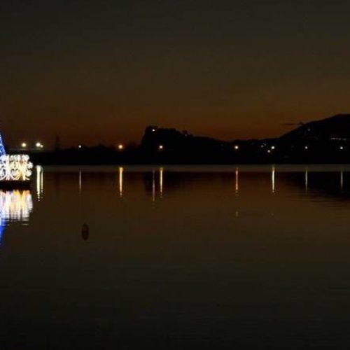 Si trova a Bacoli l'albero galleggiante più bello del mondo
