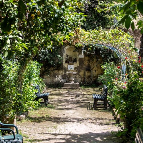 Il Giardino di Babuk: un Oasi nel cuore di Napoli