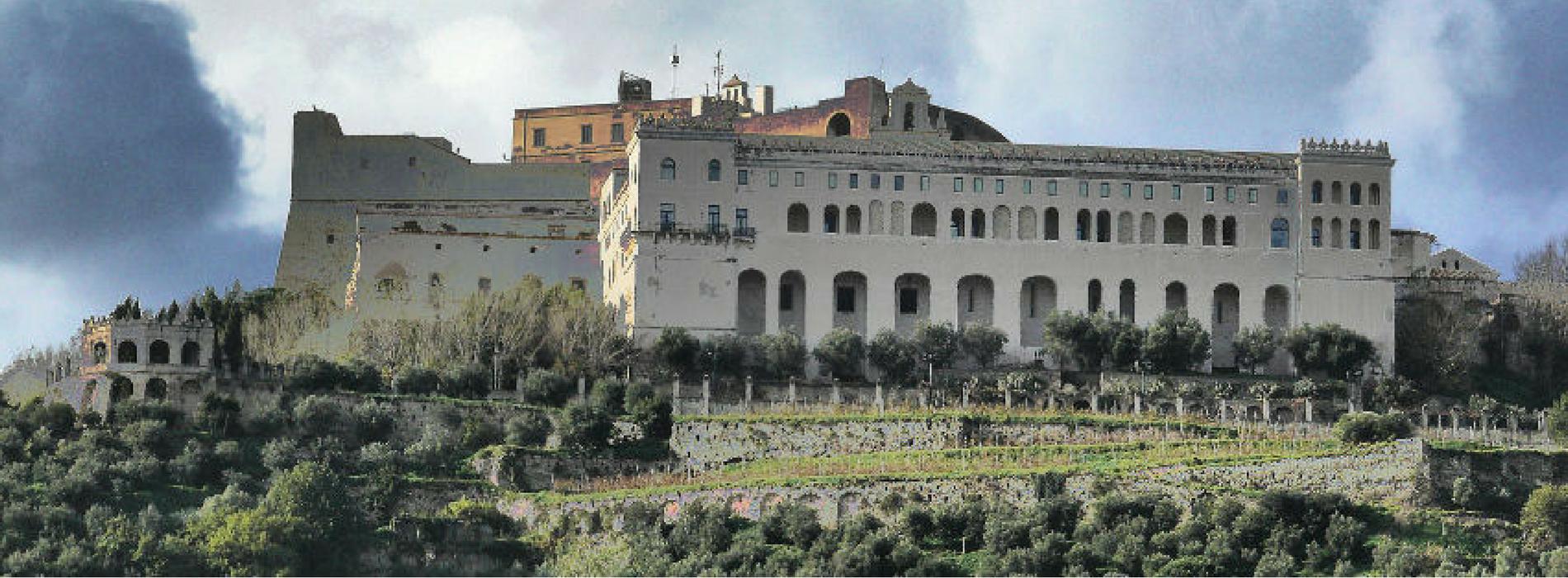 Visita Guidata al Museo e alla Certosa di San Martino